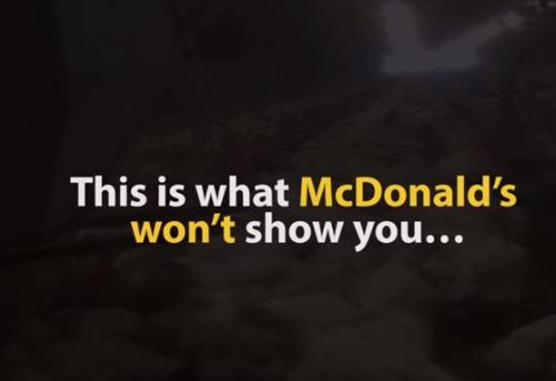mercy for animals mcdonalds